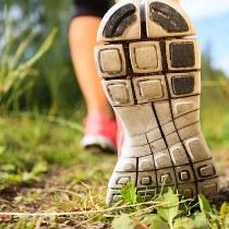 Bieg do Herbacianego Domku # 8 (118)